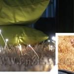 glow tappeto luminoso 000 150x150 Tappeto luminoso Glow di Javier Taberner e Nucho Poveda per Nanimarquina