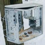riciclo case ricovero uccelli 150x150 Ricicliamo: Come trasformare un vecchio PC
