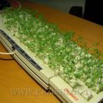 riciclo tastiera fioriera 150x150 Ricicliamo: Come trasformare un vecchio PC